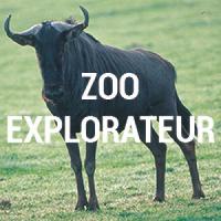 Zoo Explorateur